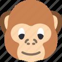 animal, avatar, avatars, monkey icon