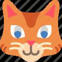 animal, avatar, avatars, cat icon