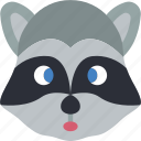animal, avatar, avatars, raccoon icon