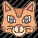 animal, avatar, avatars, cat