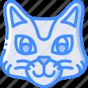 avatars, avatar, animal, cat