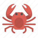 crab, animal, seafood, ocean, crustacean, sea, creature