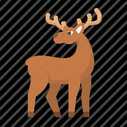 christmas, deer, elk, holiday, hunt, reindeer, santa icon