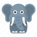 elephant, republican, animal, safari, zoo