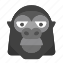 gorilla, wildlife, safari, monkey, animal, zoo
