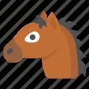 horse, equestrian, horseriding, pony, riding