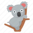 koala, cute, australia, animal, zoo, outback, safari