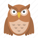 bird, night, nighttime, owl, wisdom, wise icon