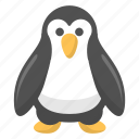 penguin, winter, tuxedo, snow, zoo, artic, animal