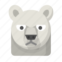 polar, wildlife, winter, northpole, freezing, bear, artic