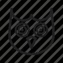 animal, beak, bird, close, eyes, face, owl
