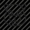 animal, bamboo, cute, mammal, panda, snow, wildlife