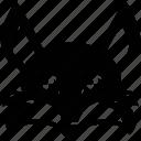 abyssinian, cat, coon, feline, fox, lynx, siamese icon