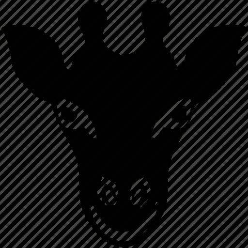 giraffe, giraffe face, goat, mammal, mouflon, mountain goat icon