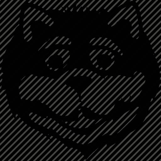 animal, polecat, skunk, skunk face icon