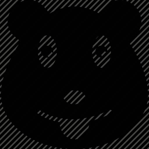 bear, bear face, cartoon animal face, cartoon bear icon