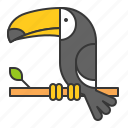 animal, bird, toucan, wildlife, zoo icon