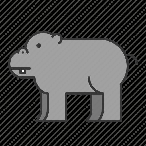 animal, hippo, hippopotamus, mammal, wildlife, zoo icon