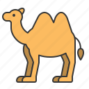 animal, camel, mammal, wildlife, zoo icon