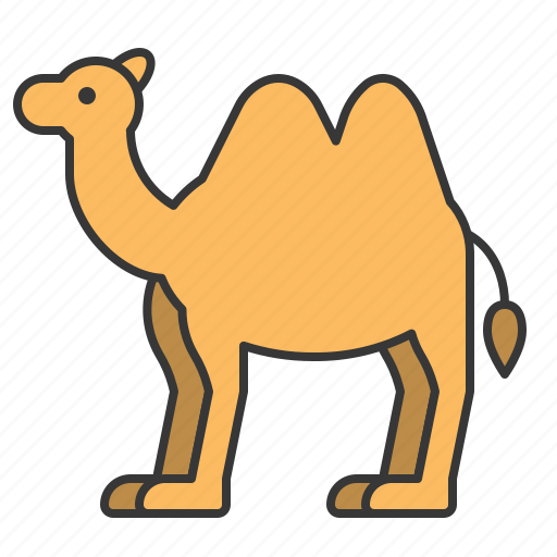 animal, camel, mammal, wildlife, zoo icon