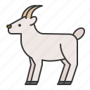 animal, goat, wildlife, zoo icon
