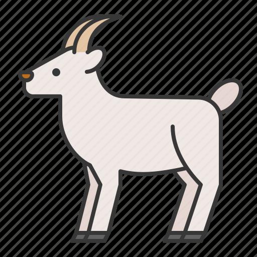animal, goat, wildlife, zoo icon