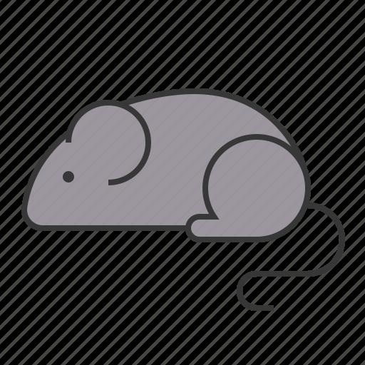 animal, mammal, mouse, rat, wildlife, zoo icon