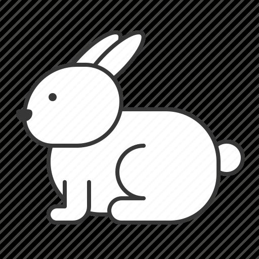 animal, mammal, rabbit, wildlife, zoo icon