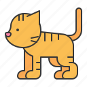 animal, cat, mammal, wildlife, zoo icon