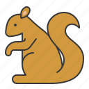 animal, mammal, squirrel, wildlife, zoo icon
