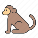 animal, animals, mammal, monkey, wildlife, zoo icon