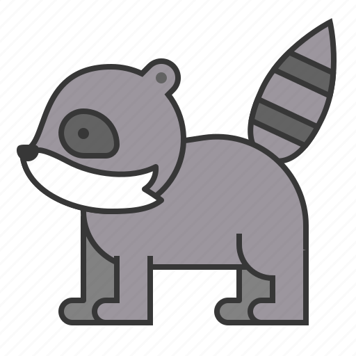 animal, mammal, raccoon, wildlife, zoo icon