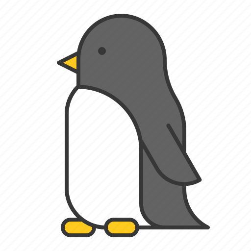 animal, bird, penguin, wildlife, zoo icon