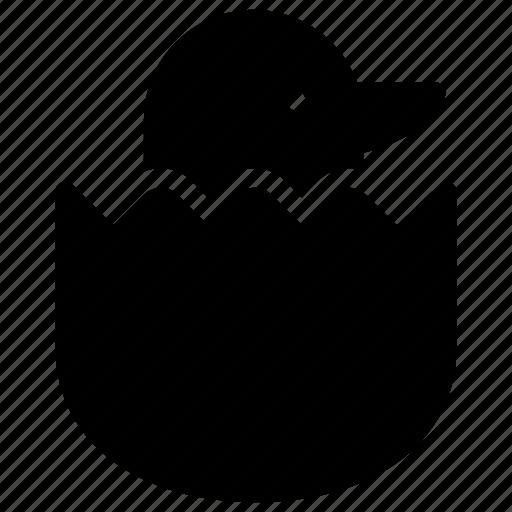 animal, bird, dove, egg icon