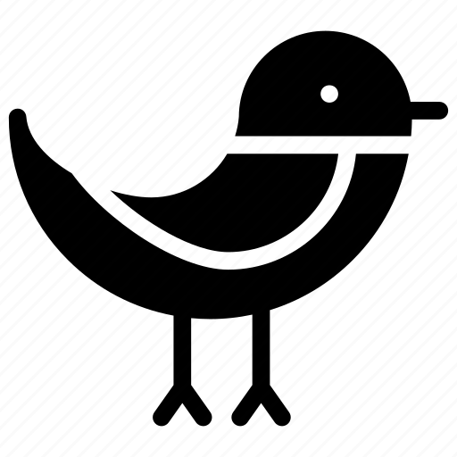 bird, dove, fly, sparrow icon