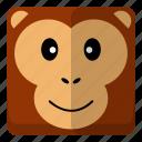 animal, monkey, wild, zoo