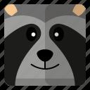 animal, cute, racoon, zoo icon