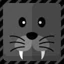 animal, sea lions, wild, zoo