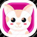animal, app, cat, cute, pet, wildlife, zoo icon
