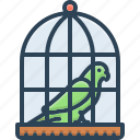 birds, birdcage, parrot in a cage, domestic, prisoner, parrot, cage icon
