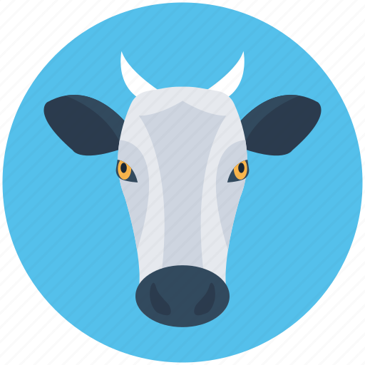 animal, calf, cattle, cow, farm animal icon