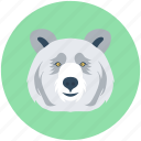 animal avatar, fox, wild animal, wolf, wolf head icon