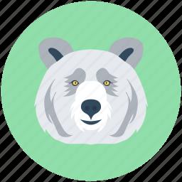 animal avatar, fox, wild animal, wolf, wolf head icon