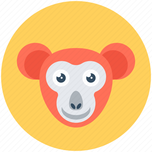 animal, baboon, macaque, monkey, monkey face icon