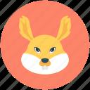 animal, bunny, cony, hare, rabbit