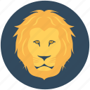 lion, zoo, panthera leo, safari animal, wild animal