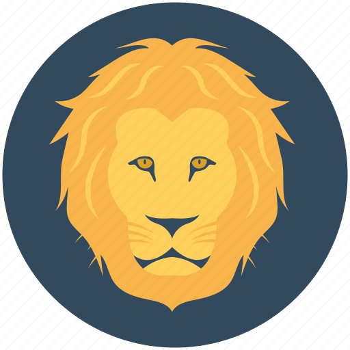lion, panthera leo, safari animal, wild animal, zoo icon