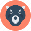 bear, bear face, grizzly bear, wildlife, zoo icon