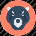 bear face, wildlife, grizzly bear, bear, zoo