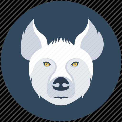 animal, mammal, pig, tapir, wild boar icon